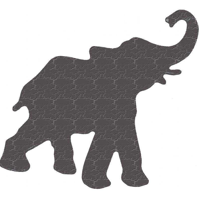 More about elephant
