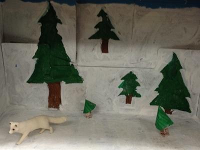 Arctic Fox Info Photo 2
