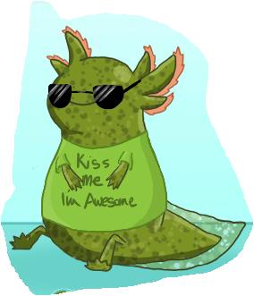 Axolotl Info Photo 13