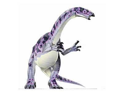 Dinosaur Alxasaurus Information For Kids