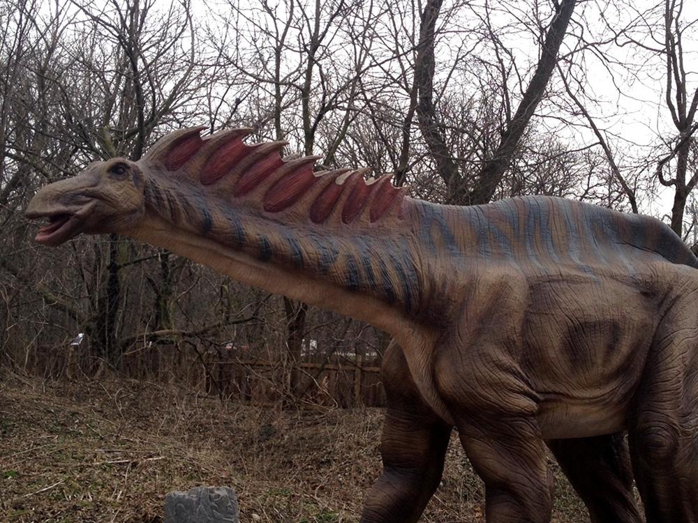Dinosaur Amargasaurus Information For Kids
