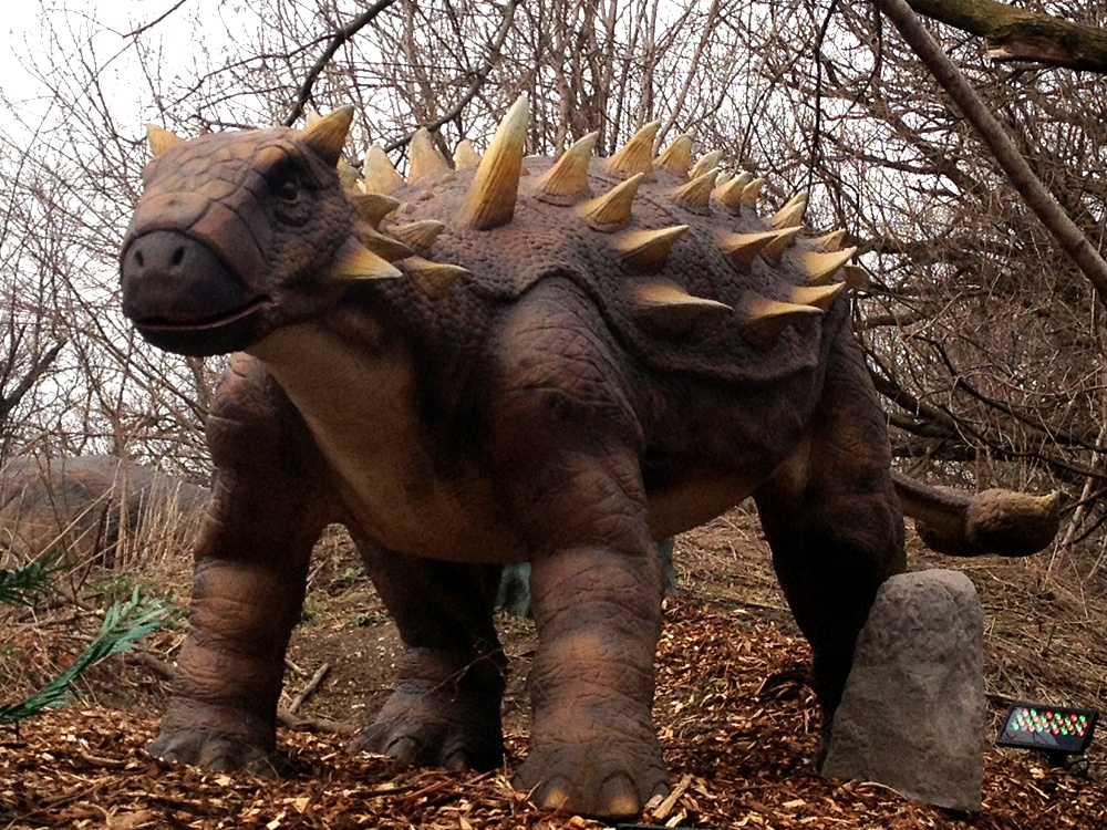 Dinosaur Dyoplosaurus Info Photo 2