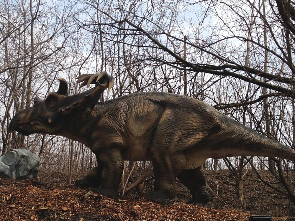 Dinosaur Kosmoceratops Information