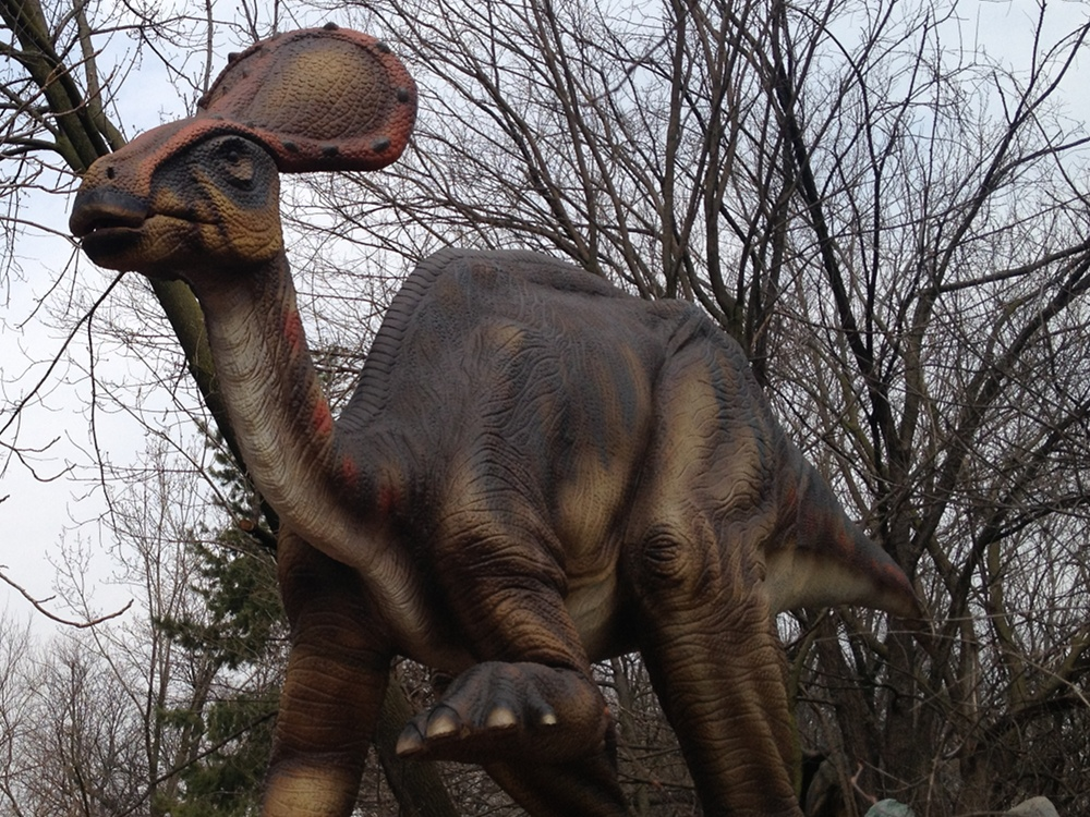 Dinosaur Olorotitan Info Photo 2