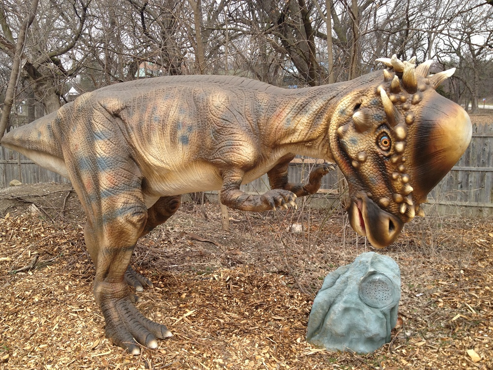 Dinosaur Pachycephalosaurus Information For Kids