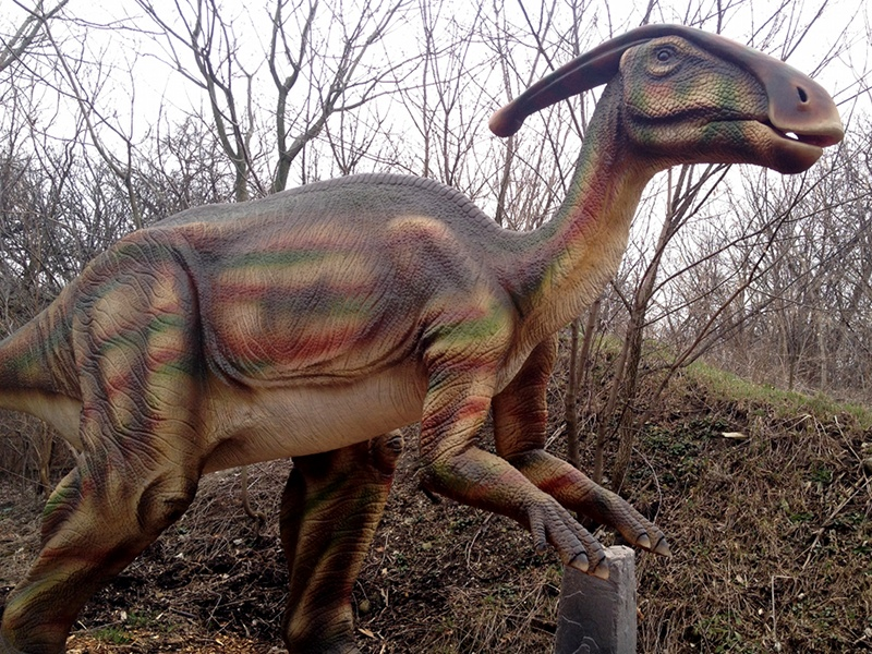 Dinosaur Parasaurolophus Info Photo 2