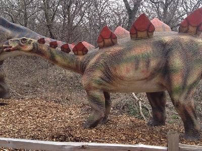 Dinosaur Stegosaurus Information For Kids