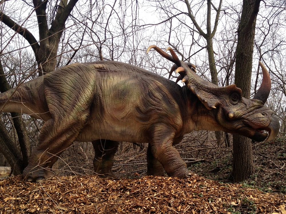Dinosaur Styracosaurus Info Photo 3