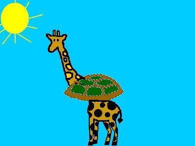 Girturtle Giraffe Turtle Information For Kids