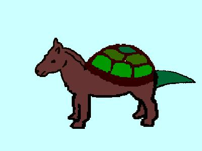 hurtle turtle horse info   photo 1