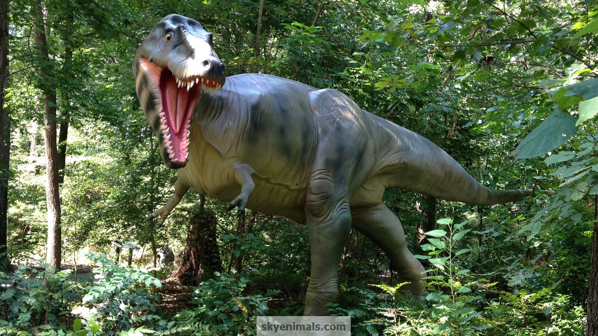 Free Dinosaur Wallpaper Images
