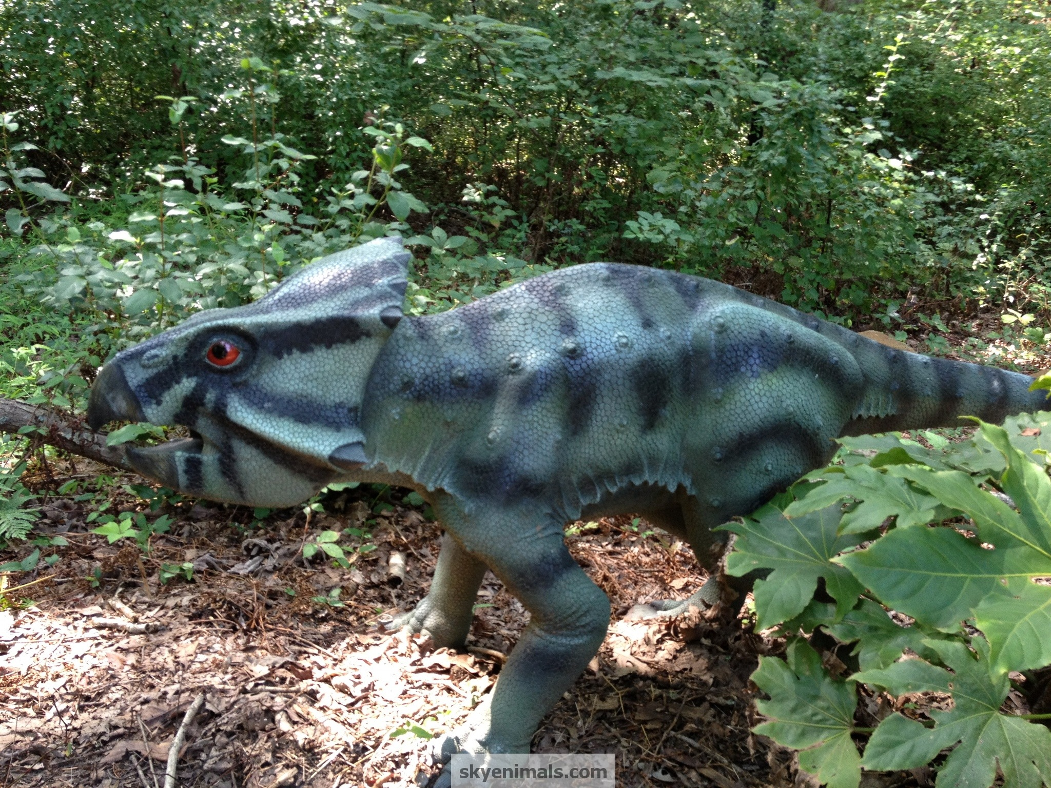 wallpaper leptoceratops images